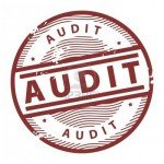 AUDIT pic